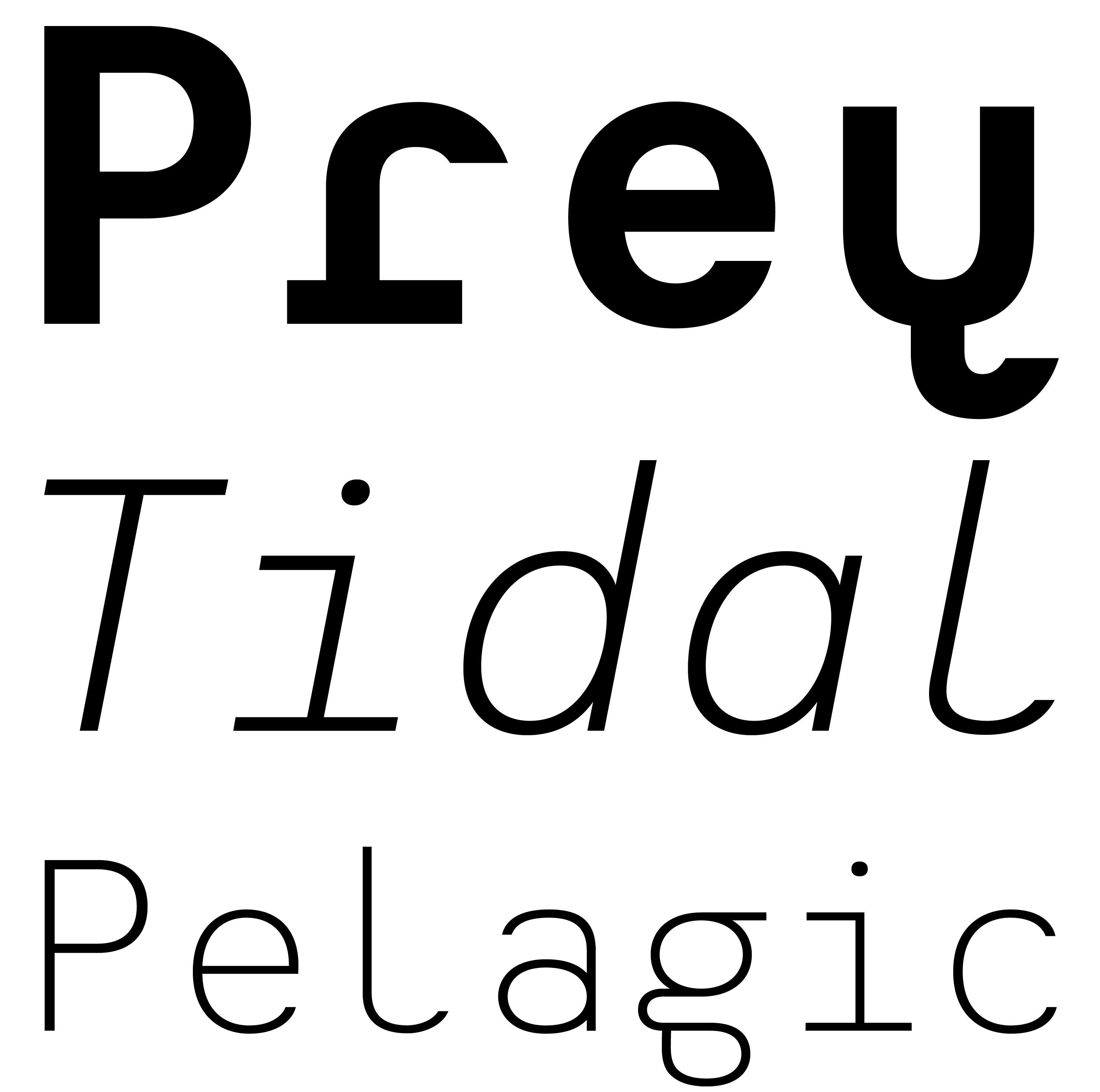 Typeface Heimat Mono A01 Atlas Font Foundry