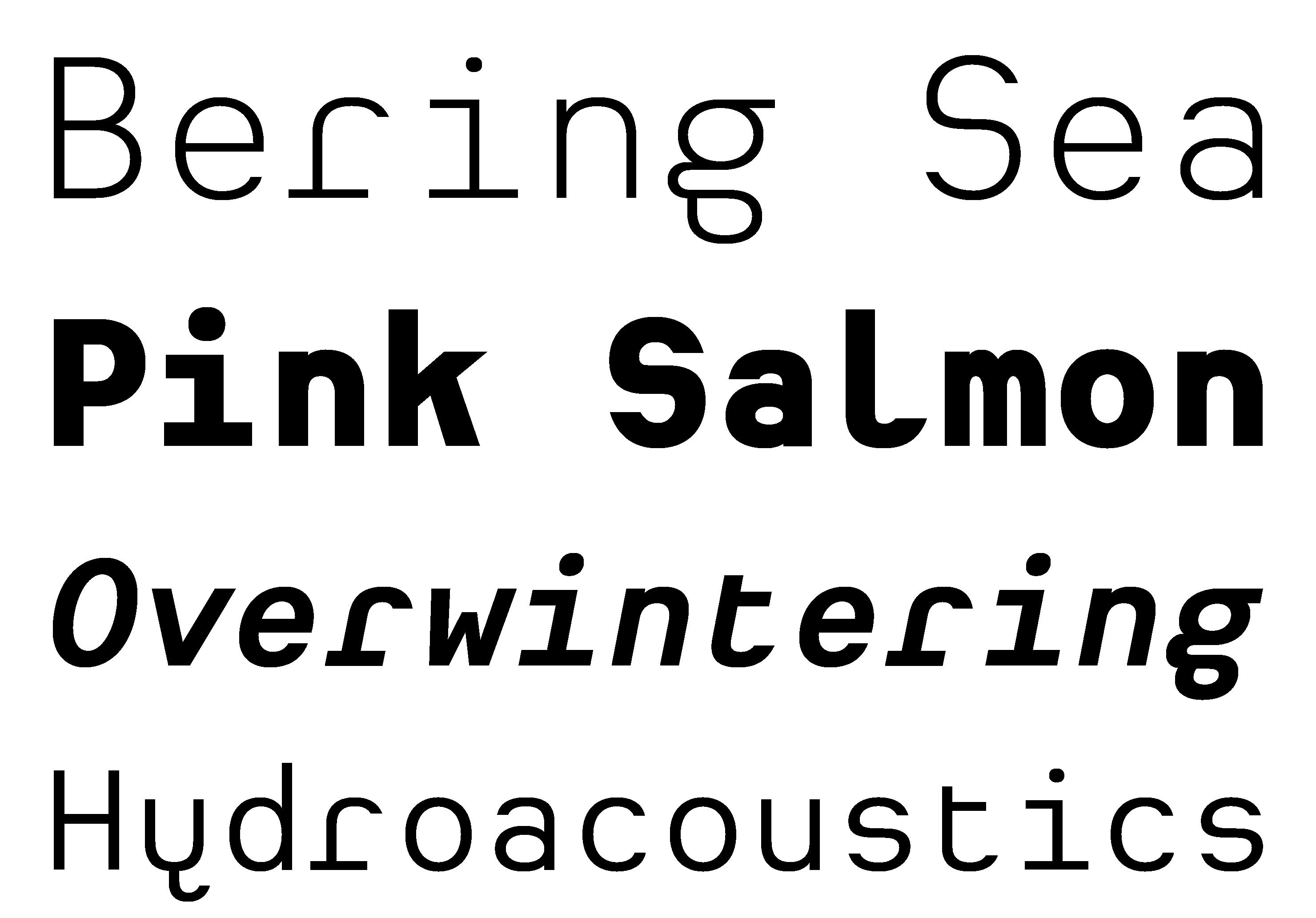 Typeface Heimat Mono A03 Atlas Font Foundry
