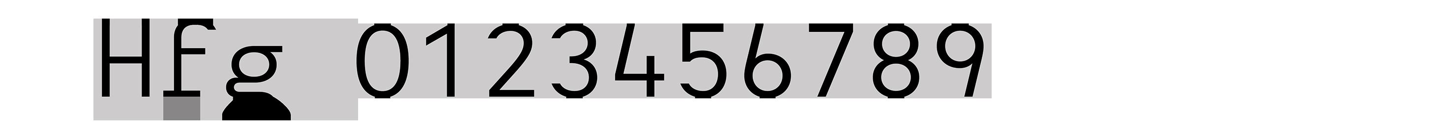 Typeface-Heimat-Mono-F07-Atlas-Font-Foundry